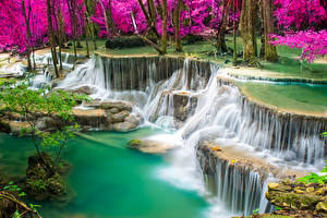 Фотография Таиланд Тропики Водопады Утес Природа
