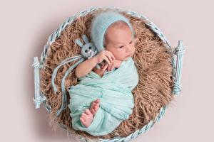 Фотографии Игрушки Зайцы Цветной фон Младенцы В шапке Дети