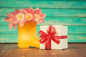 Обои Тюльпаны Доски Сапоги Подарки Бантик Цветы