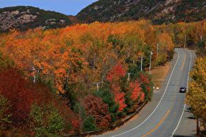 Фотография Штаты Леса Осенние Дороги Acadia National Park Природа
