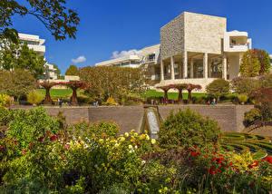 Фото Америка Парк Георгины Лос-Анджелес Кусты Дизайн Getty Museum Природа