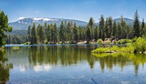 Фото Штаты Парки Озеро Деревья Lassen National Park Природа