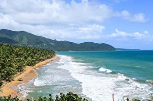 Фотографии США Тропики Берег Волны Кусты Puerto Rico
