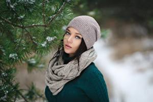 Фотографии Зимние Брюнетка Шапки Шарф Взгляд Ветки Девушки