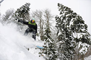 Фото Зимние Сноуборд Мужчины Снег Ель Спорт