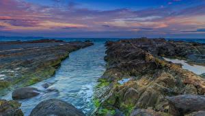 Фото Австралия Берег Камень Залив Мох Gold Coast Queensland Природа