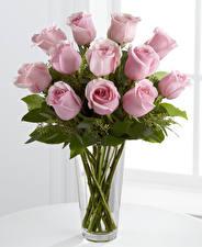 Картинки Букеты Розы Ваза Розовый Цветы