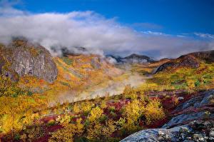 Фотографии Канада Гора Осень Леса Квебек Паром Природа