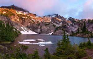 Картинка Канада Горы Озеро Снег Ель Glacier Lake Природа