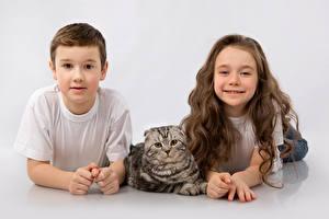 Обои Кошки Серый фон Мальчики Девочки Смотрит Дети