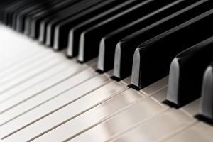 Обои Вблизи Пианино