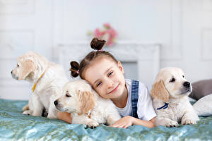 Фото Собака Девочки Щенок Взгляд Миленькие ребёнок