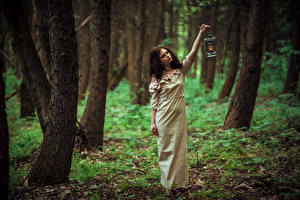 Картинки Леса Шатенка Платья Фонари Девушки
