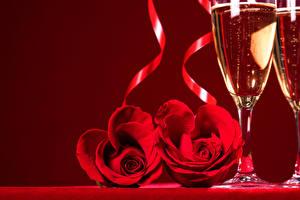 Картинка Праздники Розы Игристое вино Красный фон Красная Два Бокал цветок