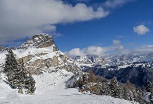 Обои Италия Горы Зимние Альпы Снег Ель Alta Badia Природа