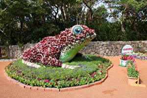 Картинки Япония Парки Лягушки Дизайн Okinawa Природа