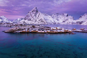 Фотография Норвегия Лофотенские острова Горы Здания Зимние Пирсы Залив Снег