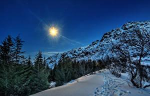 Картинка Норвегия Лофотенские острова Зимние Горы Снег Ель Солнце Природа