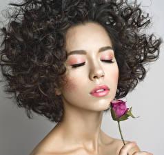 Фотография Розы Шатенка Волосы Лицо Девушки