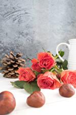Картинка Розы Каштан Розовая Шишки Цветы