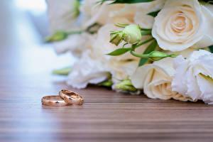 Фото Розы Свадьба Кольцо Бутон