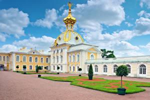 Фотография Россия Санкт-Петербург Здания Дворец Газон Купол Petergof Palace Города