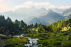 Обои Испания Горы Камень Ручей Ель Lleida Catalonia