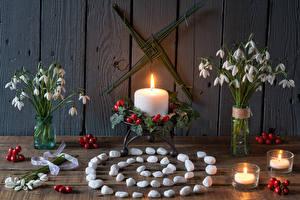 Фотография Натюрморт Букеты Подснежники Свечи Камень Ягоды Доски Цветы