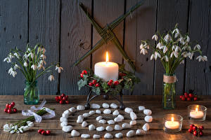 Фотография Натюрморт Букет Подснежники Свечи Камень Ягоды Доски цветок