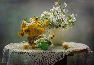 Фотографии Натюрморт Одуванчики Цветущие деревья Стол Ваза
