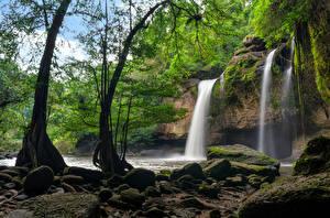 Фотография Таиланд Парки Водопады Камни Скала Деревья Мох Heo Suwat Waterfall Khao Yai National Park