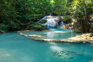 Фотографии Таиланд Тропики Парки Водопады Erawan Falls Kanchanaburi Природа