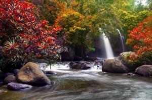 Фотография Таиланд Тропики Парки Водопады Камень Осенние Heo Suwat Waterfall Khao Yai National Park Природа