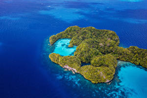 Картинка Тропики Море Остров