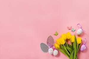 Фото Тюльпаны Пасха Цветной фон Яйца Цветы