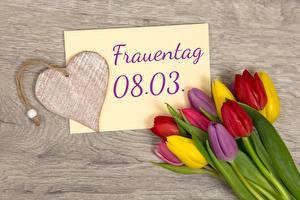 Обои Тюльпаны 8 марта Сердечко Немецкий Цветы