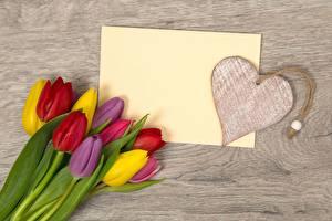 Фотографии Тюльпаны Международный женский день День всех влюблённых Сердечко Шаблон поздравительной открытки Цветы