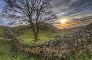 Фотография Великобритания Рассветы и закаты Холмы Ограда Деревья HDRI Hadrians Wall