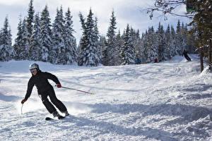 Картинки Зимние Лыжный спорт Мужчины Снег Очки Спорт