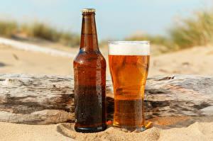 Фотографии Пиво Бутылка Стакана Пена Еда