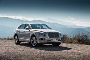 Фотография Bentley Серый Металлик 2015 Bentayga Автомобили