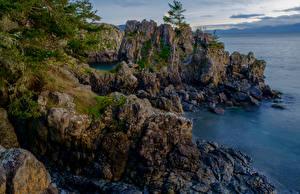 Фотография Канада Парки Берег Скала East Sooke Park Природа