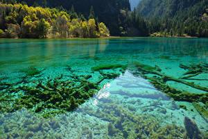 Картинка Китай Цзючжайгоу парк Парки Озеро Природа
