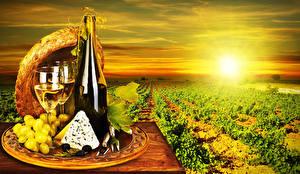 Картинки Поля Рассветы и закаты Вино Виноград Сыры Бутылка Бокалы Шляпа