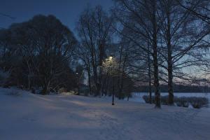 Фото Финляндия Зимние Вечер Снег Уличные фонари Деревья Tampere Природа