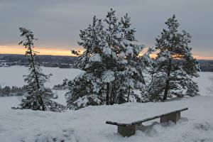 Фото Финляндия Зима Снег Скамейка Tampere Природа