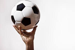Фотография Футбол Белый фон Мяч Руки