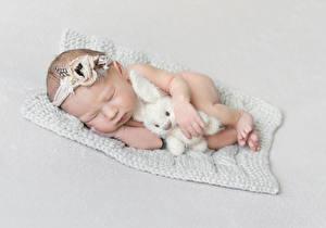Фото Зайцы Игрушка Сером фоне Младенцы Сон Дети