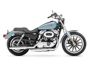 Обои Harley-Davidson Белый фон Сбоку 2007 XL1200L Sportster Low Мотоциклы