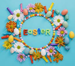 Фотография Праздники Пасха Хризантемы Конфеты Цветной фон Яйца Шар Английский Дизайн Цветы